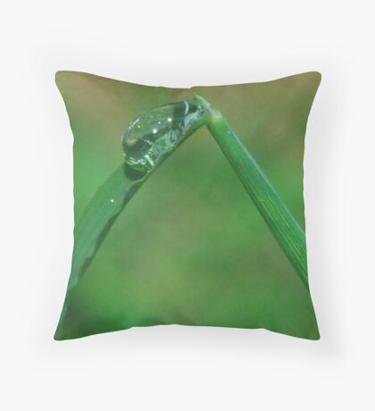 Water Slide Throw Pillow
