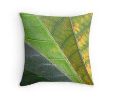 Spring Turns to Autumn Throw Pillow