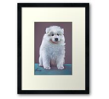 Snow pup Framed Print