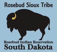 ROSEBUD SIOUX TRIBE by OTIS PORRITT