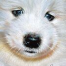 Samoyed pup by Elena Kolotusha