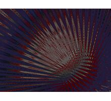 Reddish Photographic Print
