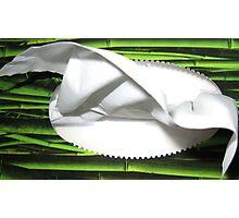 Tissue Anyone? Photographic Print
