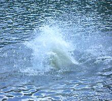 Water Spray by tiafoto