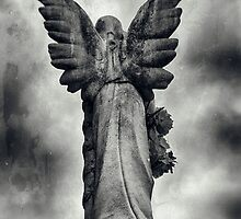 Stone Angel Wings by faithinmotion
