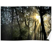 Dawn in the Ranges. Poster
