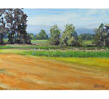 Original Acrylic Plein Air Landscape Painting - Sauvie Island Photographic Print
