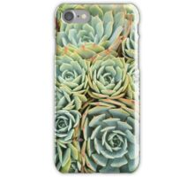 Succulentville iPhone Case/Skin