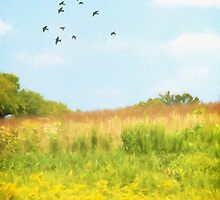 Peaceful Summer Afternoon by Lois  Bryan