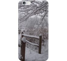 Pathways in the Snow iPhone Case/Skin