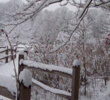 Pathways in the Snow Sticker