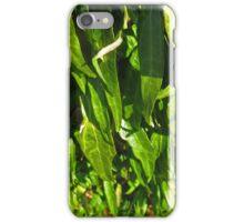Leaf Cascade iPhone Case/Skin