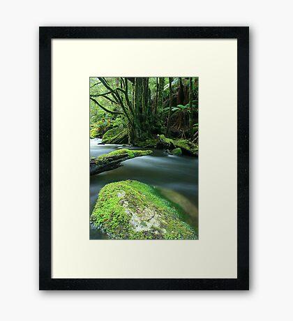 silhouette . Framed Print