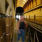 The Coy Lesbian's Ghost: Old Melbourne Gaol by Tania  Donald