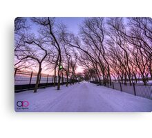 Purple Olive Park Canvas Print