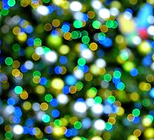 Christmas Tree Pine Lights by RichCaspian