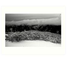 Snowy Scenes Art Print