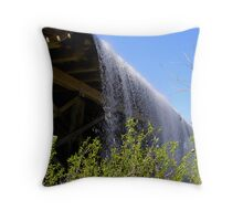 stephenfield dam Throw Pillow