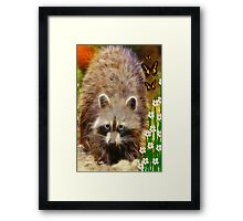 ~ RICKY RACCOON ~ Framed Print