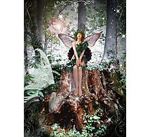 Secret of the Wood Photographic Print