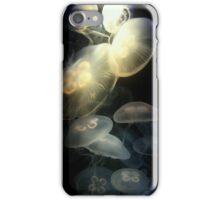 Jellyfish Darkness to Light iPhone Case/Skin