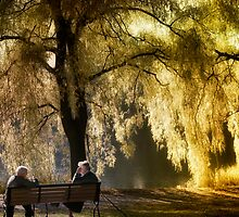 Golden Moments  by Elaine  Manley