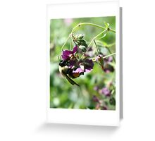 Bumble Bee With Pollen Greeting Card