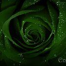 Envy by Reena D