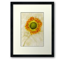 September Charm - A collaboration with Dave Edwards Framed Print