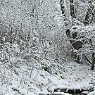 Winter Wonderland by LifeAndDeath15