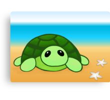 Kenny - The Baby Tortoise Canvas Print