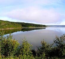 lake of the prairies by Cheryl Dunning