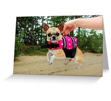 Pooch Overboard! Greeting Card