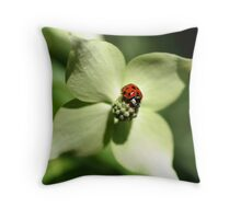 Ladybug On Dogwood Flower Throw Pillow