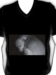 Sweet Dreams my Beautiful Puppy T-Shirt