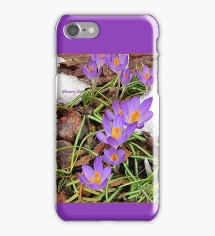 Spring ~ We Wish You Had Meant It iPhone Case/Skin