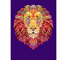 Geometric Lion Photographic Print