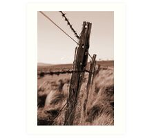 Barbed Fence Art Print