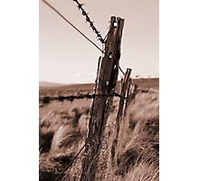 Barbed Fence Photographic Print