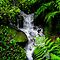 Small Mountain Stream by NatureGreeting Cards ccwri