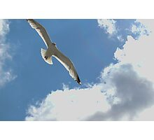 Fly with me  Photographic Print