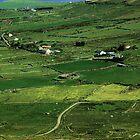 Irish county by Barbara Ignasiak