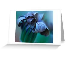Beauty Fades. Greeting Card