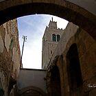 Medina Alleyway by Tom Gomez