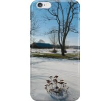 Snow Shadow iPhone Case/Skin