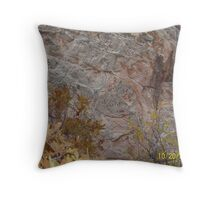 Garden of the Gods Name Carvings Throw Pillow