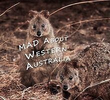 Quokkas - MAD About Western Australia (Galaxy Case) by Dave Catley