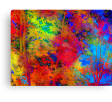 Color Freedom Canvas Print