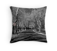 The Road to Sanity Throw Pillow