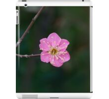 The First Colors of Spring iPad Case/Skin